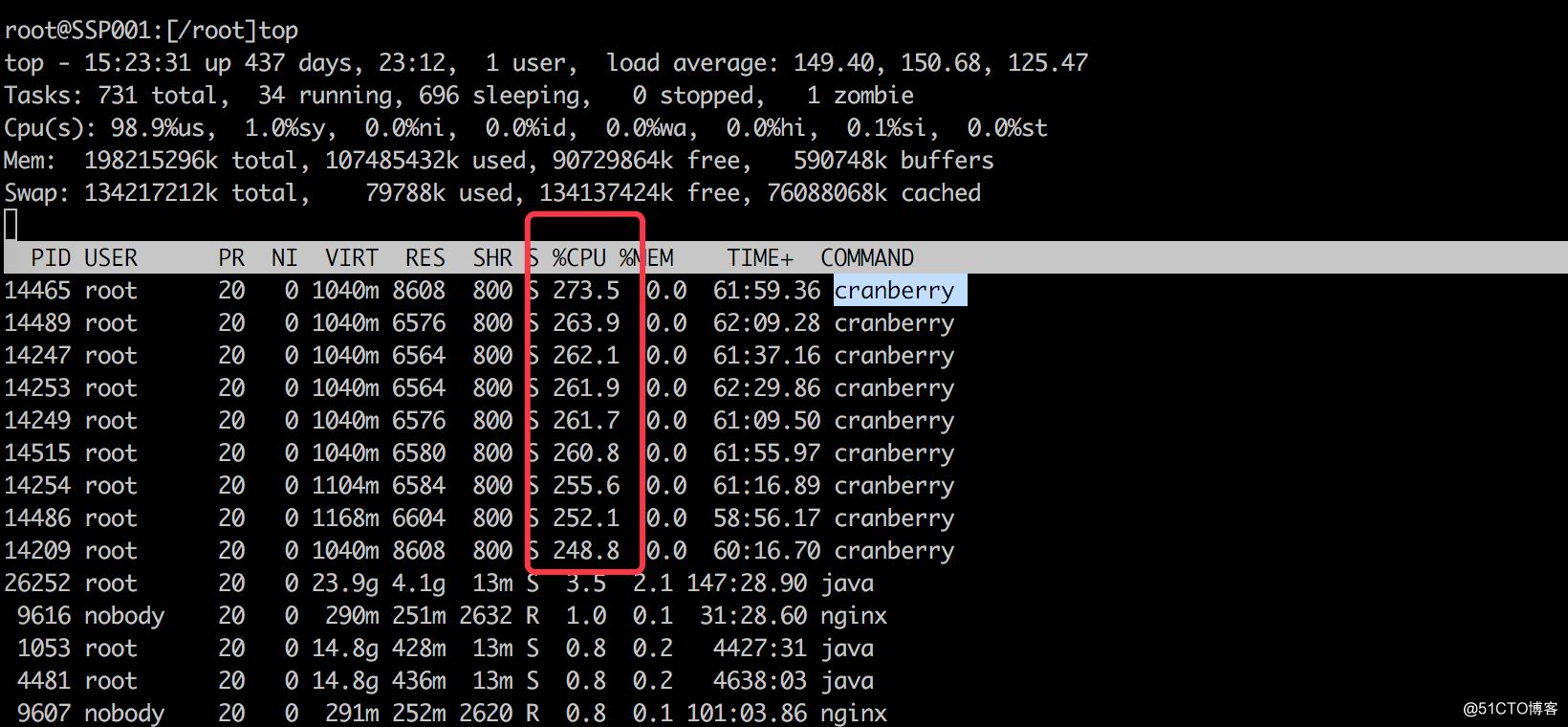 记录徒手解决cranberry病毒的过程