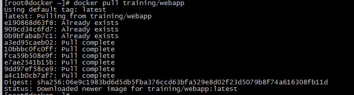 Docker的安装和使用及dockerfile简单使用
