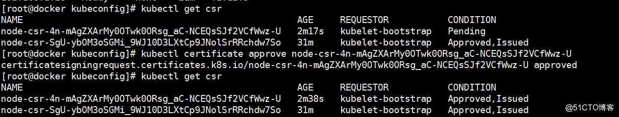 《二》Kubernetes集群部署(node)-搭建单集群v1.1